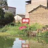 曝光!这个村里的几个池塘,怎么会变得又脏又臭?