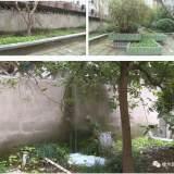 车辆乱停、绿化带种菜,污水乱排...嵊州这个小区有点乱