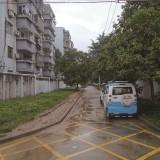 曝光!嵊州这个村绿化带被车轮碾成泥地