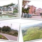 惊艳!嵊北最美村庄,曾获国家级、省级多个称号…