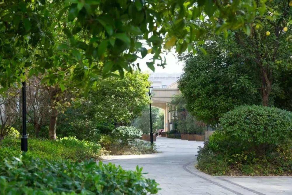 嵊州城市核心区222套现房将于近日公开拍卖
