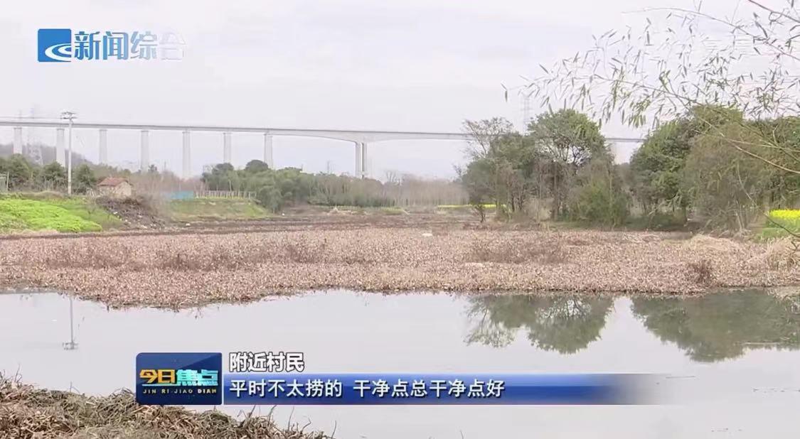 嵊州的这条江里水草泛滥,岸边垃圾成堆