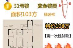 未来城中间楼层116平方110万